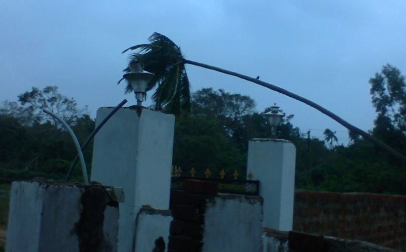 Cyclone Phailin after effects
